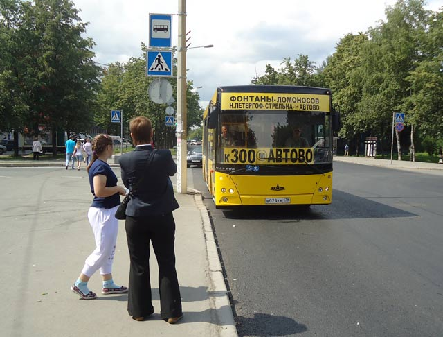 Bus to Peterhof