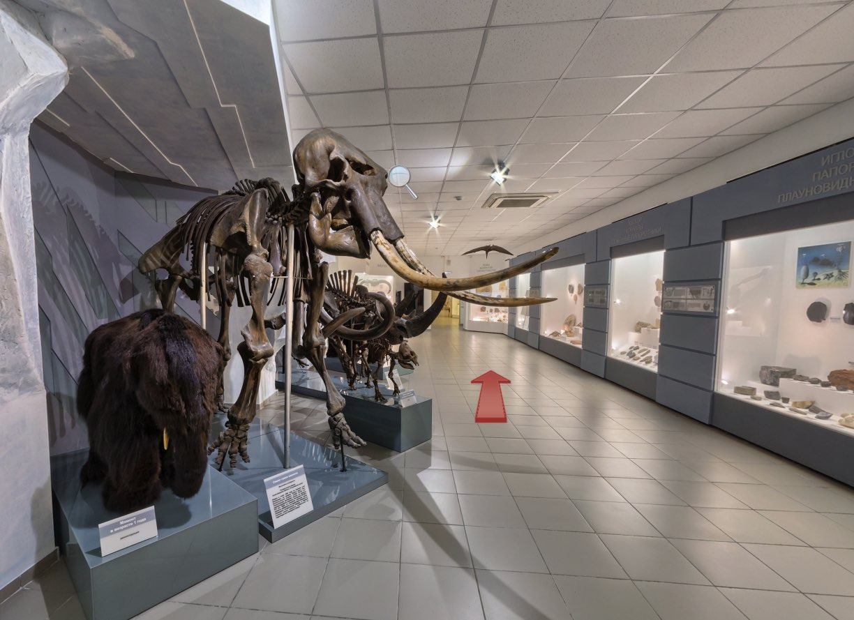 Mamut - Museum of Nature in Novosibirsk 2