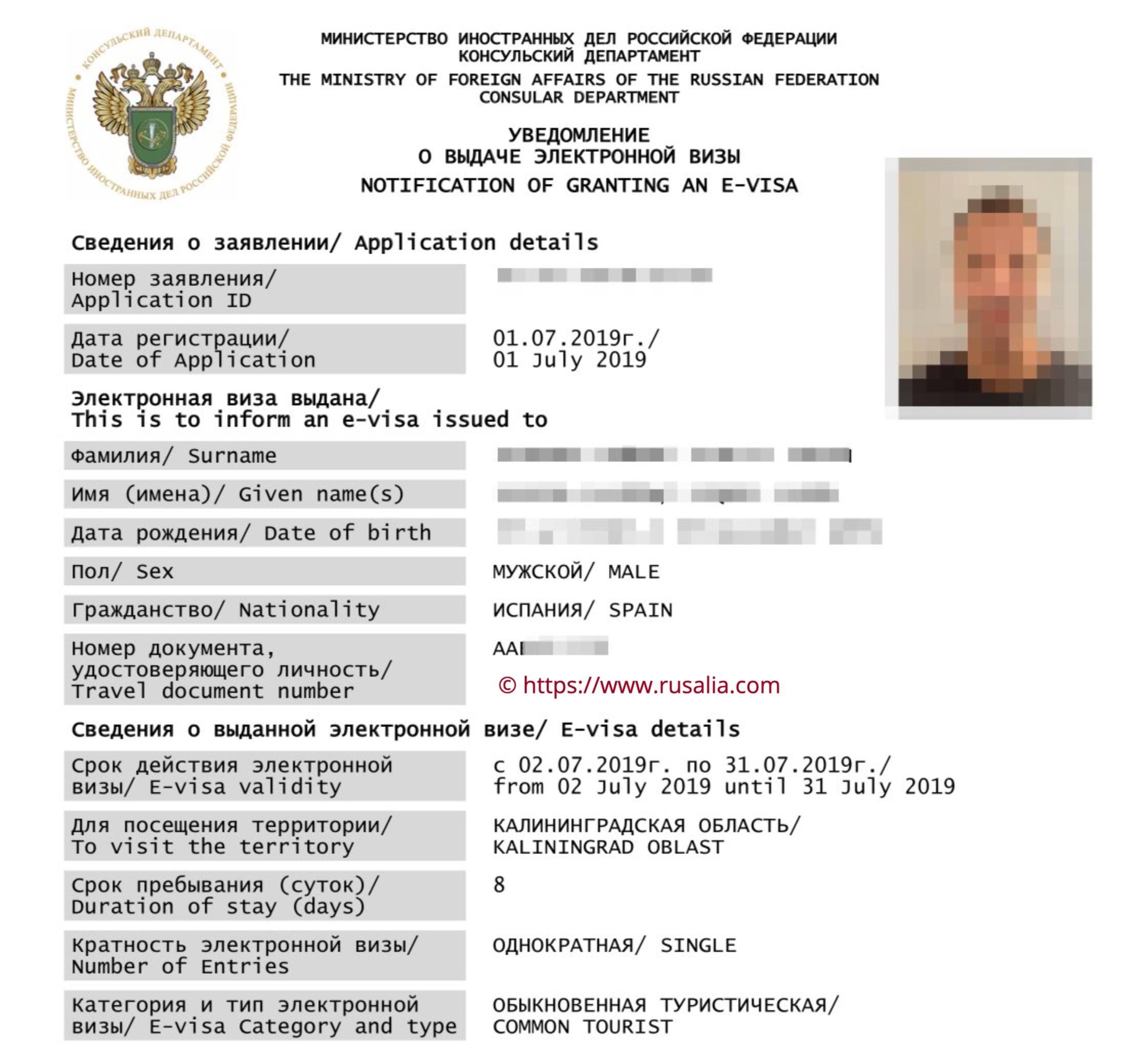 E-Visa Russland Beispiel - Ausgewähltes Bild