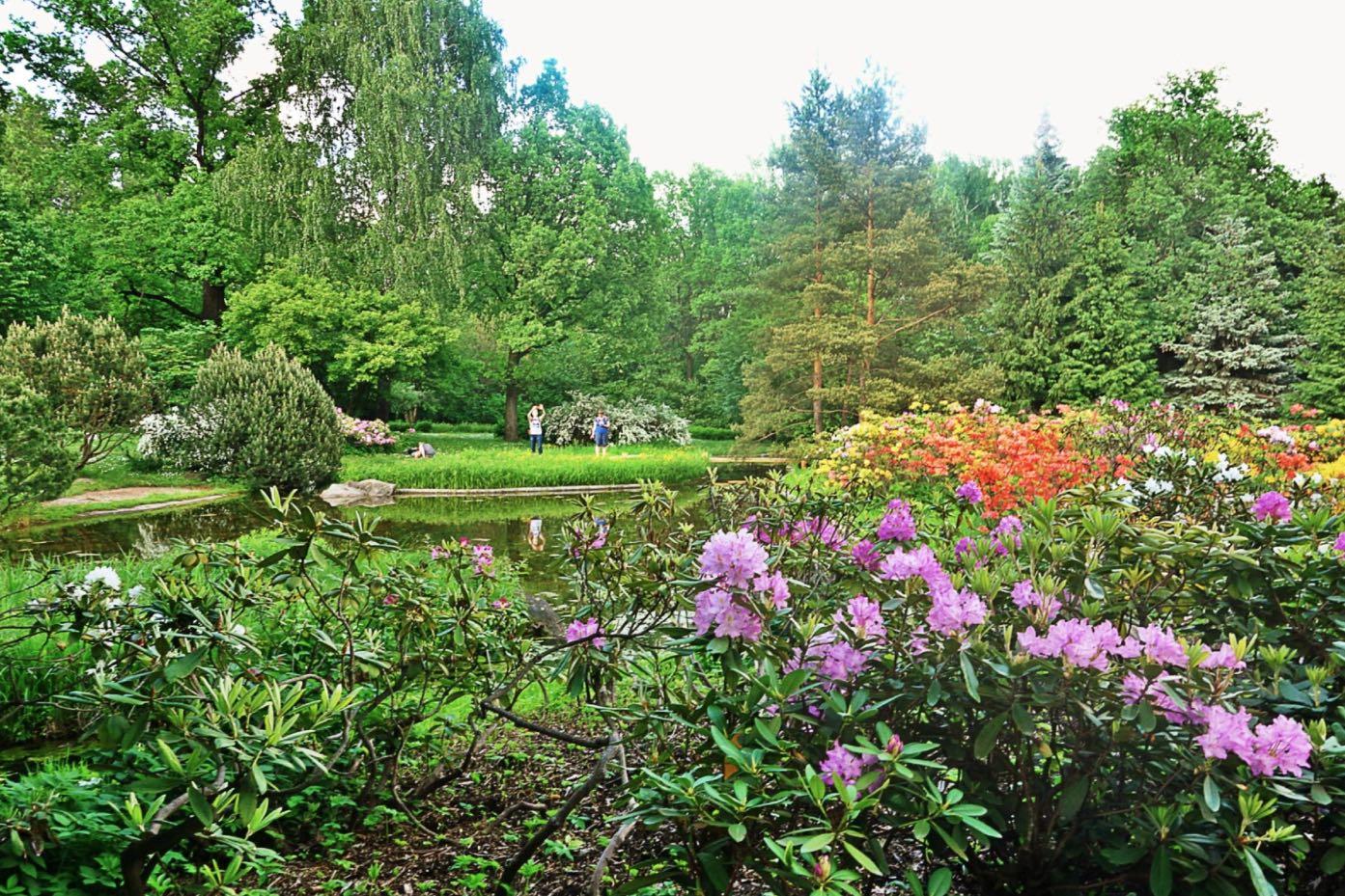 Moskauer Botanischer Garten