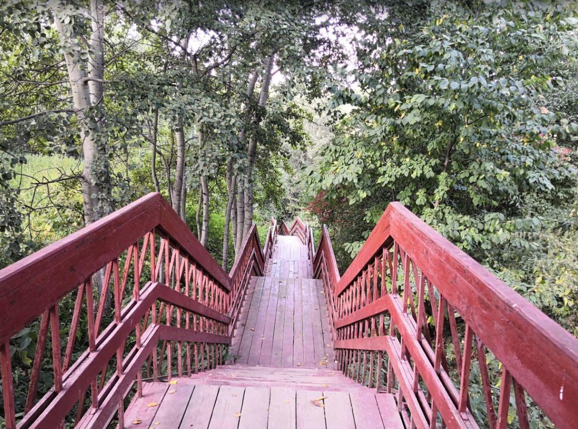 Kolomenskoye park stairs